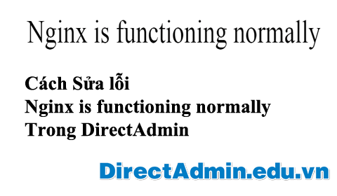 Nginx is functioning normally